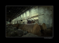 Factory of broken dreams V Final (DavidZurita) Tags: light david texture textura luz alpaca rural nikon factory desert amarillo ambient alava soledad nikkor paja euskalherria euskadi fabrica araya misterio ambiente pasado d300 rurales zurita abandona alavavision d300s davidzurita