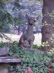 crumbling deer