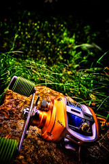 reel final (doppo1) Tags: canon garden bay team fishing hdr reel batemans daiwa baitcaster