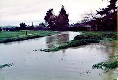 FLOOD_2 (etgeek (Eric)) Tags: permanentebypass creek muddywater carmelterrace blachschool 1983 flood losaltos losaltosfire lafd losaltospublicworks santaclaracountyfloodcontrol wash mud permanentecreek 9682742 altameaddrive