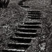 Take the stairs towards a great place