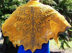 Yellow Percy shawl (reaung) Tags: yellow knitting lace shawl percy handknitting shawlette shoulderette