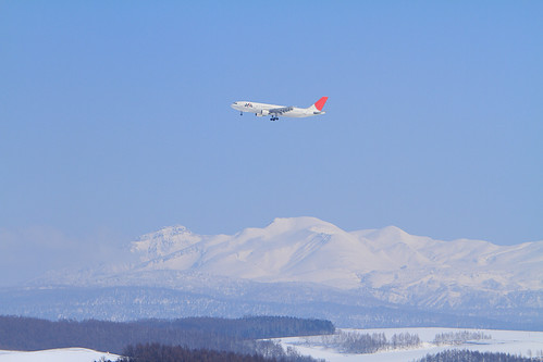 JAL's A300-600R with Mt. Daisetsu-zan