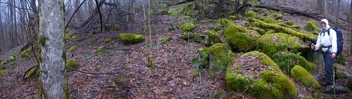 Misti near Fontana