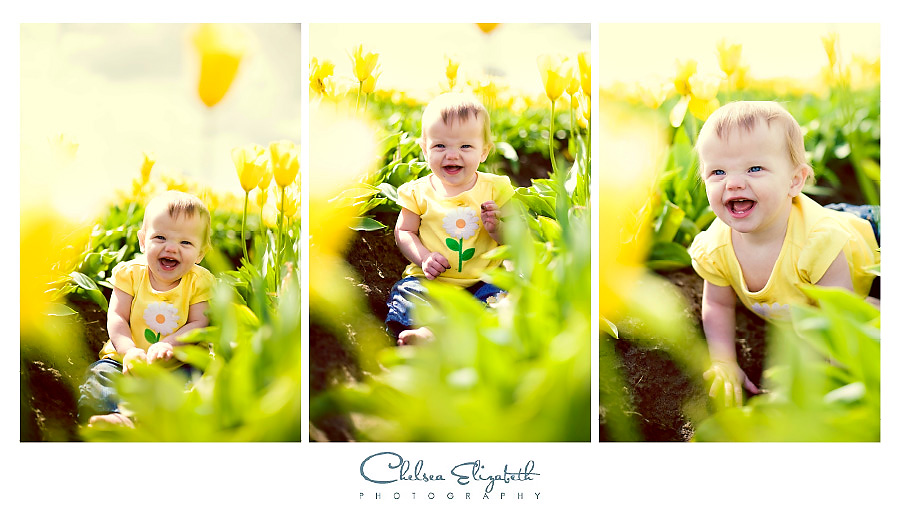 vintage field of yellow tulips and toddler with yellow daisy t-shirt oregon wooden shoe farm