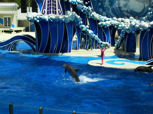 sea world 091