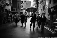 Salarymen off to lunch in the rain: Ningyocho, Tokyo (Alfie   Japanorama) Tags: depthoffield learnphotographyinjapan learnphotographyintokyo photographyclassesintokyo photographylessonsintokyo aperture camera discoverjapan dof japan japanese jimbocho learnphotography lens lenses nikkor50mmf12ai nikon ningyocho photographer photographs photowalksinjapan photowalksintokyo sightseeing tokyo tourism travel zonefocusing nikond700ningyochotokyojapanjapanesepeopleblackandwhite