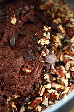 chocolate bread batter with nuts