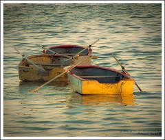 Otros botes... / Other boats (ArielF MdP) Tags: lake argentina boats lago botes boat agua buenosaires laguna oars bote remos topshots kartpostal flickraward panoramafotogrfico thebestofmimamorsgroups theoriginalgoldseal flickrsportal