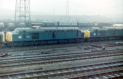 40087 40025. Healey Mills Feb '82 (Barrytaxi) Tags: br mills healey class40 40025 40087