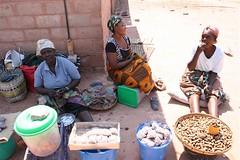 Luangwa Boma Zambia Africa (TravelTV) Tags: africa zambia luangwa zambeziriver