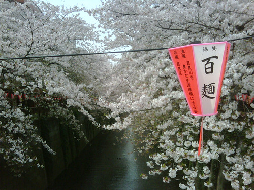 Nakameguro Apr 2010