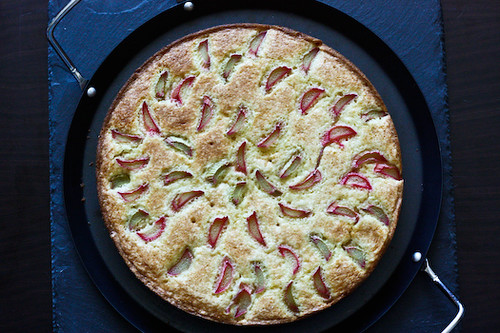 rhubarb cake from top