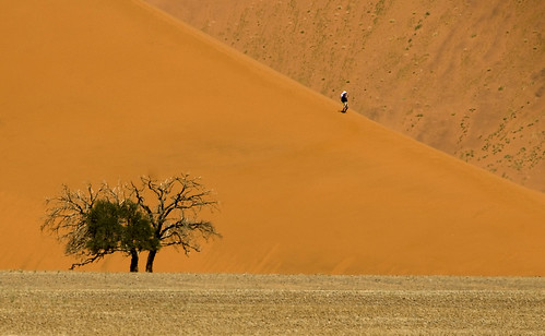 One Man & One Tree, Sossusvlei, Namibia