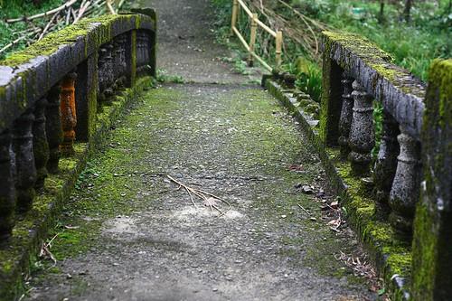 廢棄的舊橋有種無可比擬的迷人