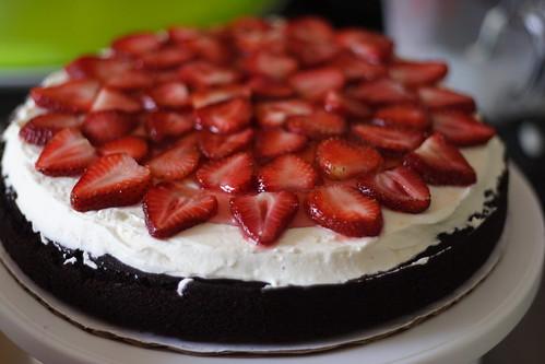 Joleyn CakeS0025