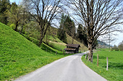 Tools house II near Zell am See (Turist of the World) Tags: road house nature grass austria nikon zellamsee