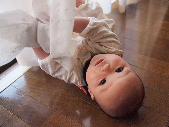 姫、5カ月
