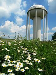 Wyoming water tower (rkramer62) Tags: sky clouds daisies watertower monstrosity daisyhill wyomingmichigan rkramer62