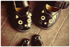 365.12 (nezumichuu) Tags: cute cat shoes doll 365 hesue
