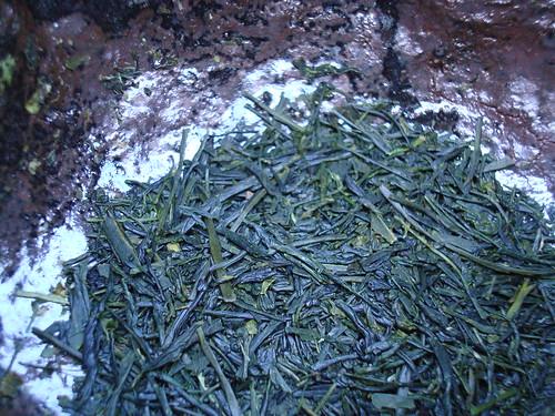 Kirameki Leaf