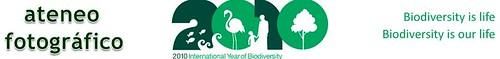 af biodiversity verde