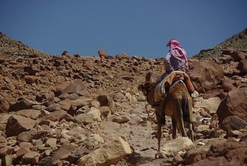 4659887625 07272bf05c Atop Mt. Sinai