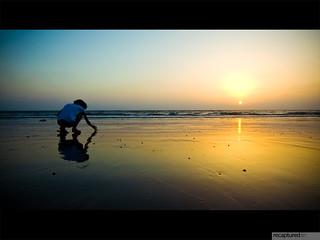 she searches for sea-shells on the sea-shore