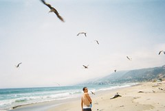 the beach. (ahhhlicia) Tags: ocean california seagulls mountains west beach boyfriend water coast sand waves malibu zuma mack