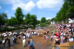 Tilt-Shift Appleby Fair (WittWooPhoto) Tags: summer horse sunshine clouds nikon travellers sigma explore cumbria gypsies appleby d60 edenvalley tiltshift horsefair rivereden sigma1770 applebyfair gypsiefair washinghorses wittoboyo paulwitterickphotography wwwwitterickcom