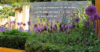 2010-05-25   Chelsea Flower Show  147.jpg