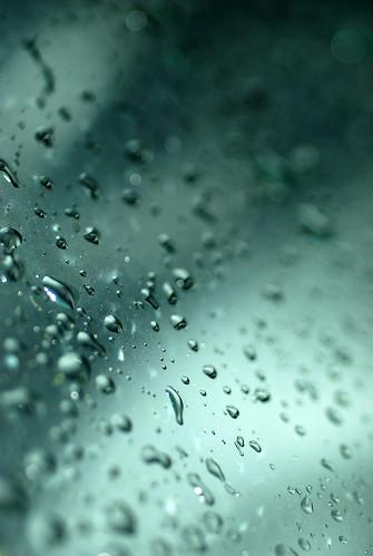 下雨天拍的DSC_7516.jpg