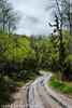 The Joy of Exploration (James Neeley) Tags: landscape tetons grandtetonnationalpark jamesneeley mountainhighworkshops