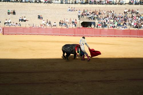 Dianas- Spain 2010 380