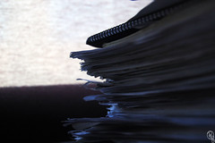 Recortes de la memoria (Roberto Greciano) Tags: nikon canarias pau título apuntes estudiante clases bachiller selectividad aprobado d40 suspenso robertogreciano