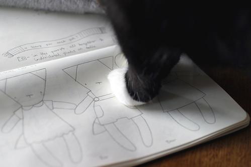 design paws
