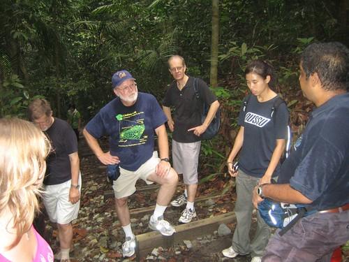 Bukit Timah Nature Reserve_4
