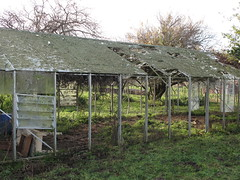 OId Glasshouse (Eyersh) Tags: derelict glasshouse canong10