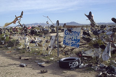 Roadside12 (Alix!) Tags: california abandoned fence highway shoes desert random roadside shoetree highway62 hwy62 ca62 riceshoefence
