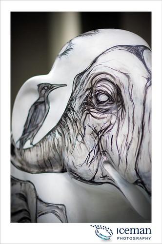 136-Julia's Elephant