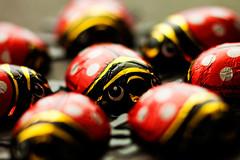 vollmilch ladybugs (ion-bogdan dumitrescu) Tags: red white lady canon bug wrapping paper shiny chocolate shift ladybug dots tilt 90mm aluminium tse bitzi mg2740 ibdp ibdpro wwwibdpro ionbogdandumitrescuphotography