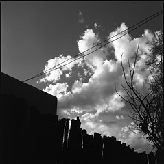 Evening Sky (Summicron20/20) Tags: 6x6 zeiss kodak trix hasselblad f4 cf 220 sonnar 320txp 150mm 25a e24 202fa