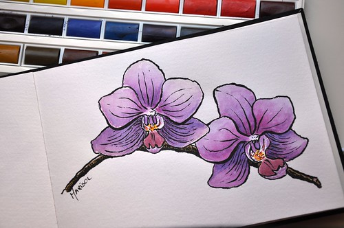 Orquidea drawn with Pentel Brush Pen and watercolors