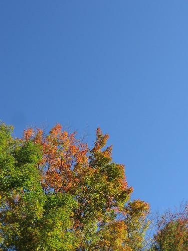 September-October 2010 072