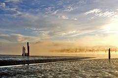 Pitt River Morning 3 (showbizinbc) Tags: mist fog sunrise river golden britishcolumbia mapleridge portcoquitlam pittriver pittmeadows mistymorning superaplus aplusphoto platinumheartaward winnr