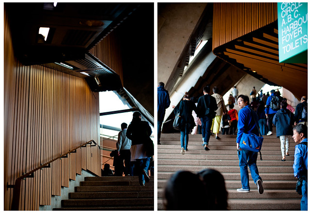 Sydney Opera House Open Day -4