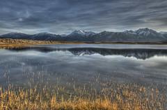 Evening At the Marsh Pond (Bill Wight CA) Tags: california mammothlakes eastern highsierra billwight copyright2010