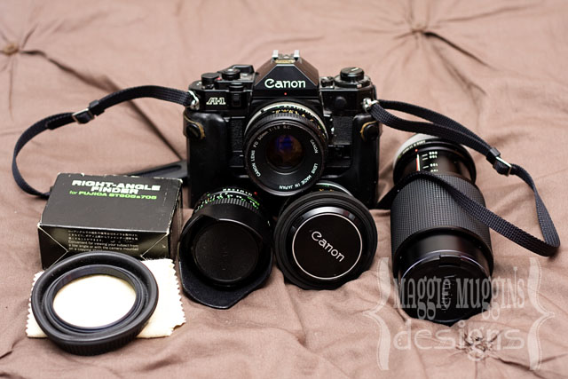 Old Canon Camera and Lenses