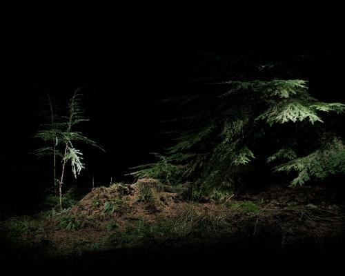 Stuart Bailes Untitled VIII (2007)