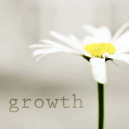growth by balanced.crafts, on Flickr